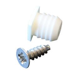 Schroef + plug M10